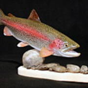 Rainbow Trout On The Rocks Poster by Eric Knowlton