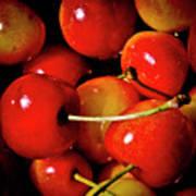 Rainier Cherries Poster