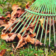 Raking The Fallen Autumn Leaves Poster