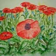 Ramonas Poppies Poster