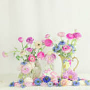 Ranunculus With Love In A Mist Poster