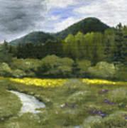 Rapid Creek Poster