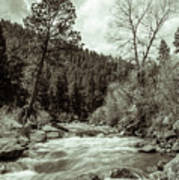 Rapids During Spring Flow On The South Platte River Poster