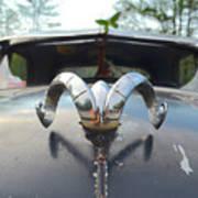 Rat Rods - 1952 Dodge Poster