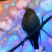 Raven In Spring Poster