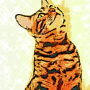 Ravi Series #7 Poster