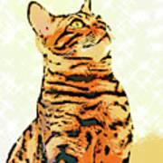 Ravi Series #9 Poster