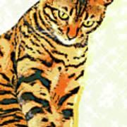 Ravi Series #3 Poster