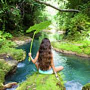 Reach Falls River Poster
