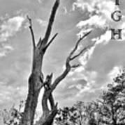 Reach High Poster