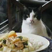 Ready For Dinner Poster