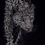 Realistic Cheeta Poster
