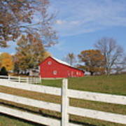 Red Amish Barn Poster by Donna Bosela