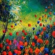 Red And Blue Poppies  Poster
