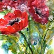 Red Anemone Flowers Poster
