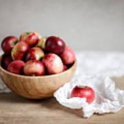Red Apples Still Life Poster