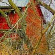 Red Barn Behind The Trees Poster