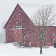 Red Barn Nor'easter  Poster