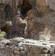 Red Basilica Scene 4 Poster