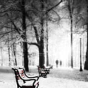 Red Benches In A Park Poster