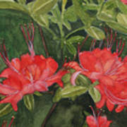 Red Blooms On The Parkway Poster