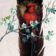 Red Cardinal Poster