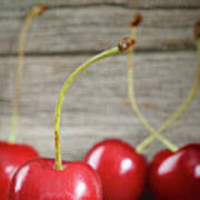 Red Cherries On Barn Wood Poster by Sandra Cunningham