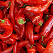 Red Chile Peppers  Poster