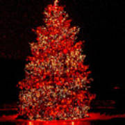 Red Christmas Tree Poster