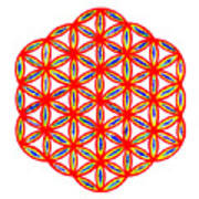 Red Flower Of Life Poster