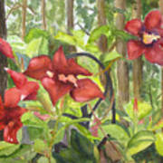 Red Flowers On The Deck Poster