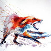 Red Fox /big Poster