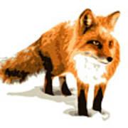 Red Fox In Winter Poster by DB Artist