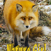 Red Fox Nature Girl Poster