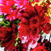 Red Gerbera Daisy Abstract Poster