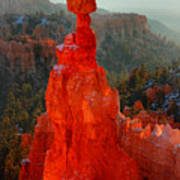 Red Glow Of The Sunrise On Thor's Hammer In Bryce Canyon Poster