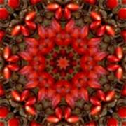 Red Kaleidoscope No. 1 Poster
