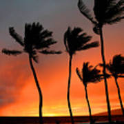 Red Maui Sunset Hawaii Poster
