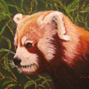 Red Panda 2 Poster