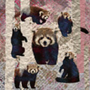 Red Panda Abstract Mixed Media Digital Art Collage Poster