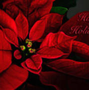 Red Poinsettia Happy Holidays Card Poster
