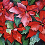 Red Poinsettias Poster