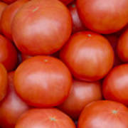 Red Ripe Tomatoes Poster