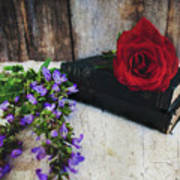 Red Rose And Sage With Vintage Books Poster