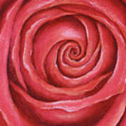 Red Rose Pastel Painting Poster