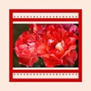 Red Rose With A Whisper Of Yellow And Design Poster