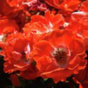 Red Roses Botanical Landscape 1 Red Rose Giclee Prints Baslee Troutman Poster