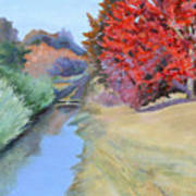 Red Tree and River Poster