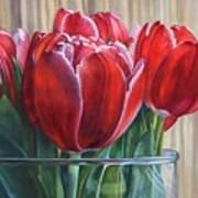 Red Tulips, Glass Rim Poster