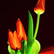 Red Tulips In Vase # 4. Poster